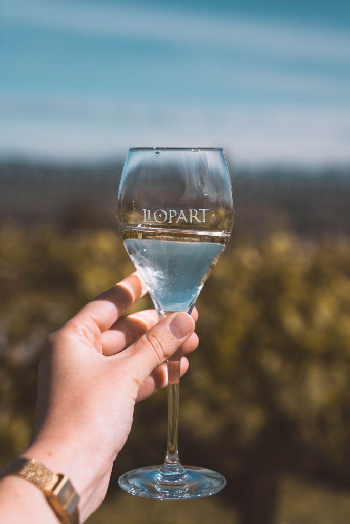 winetourism penedes