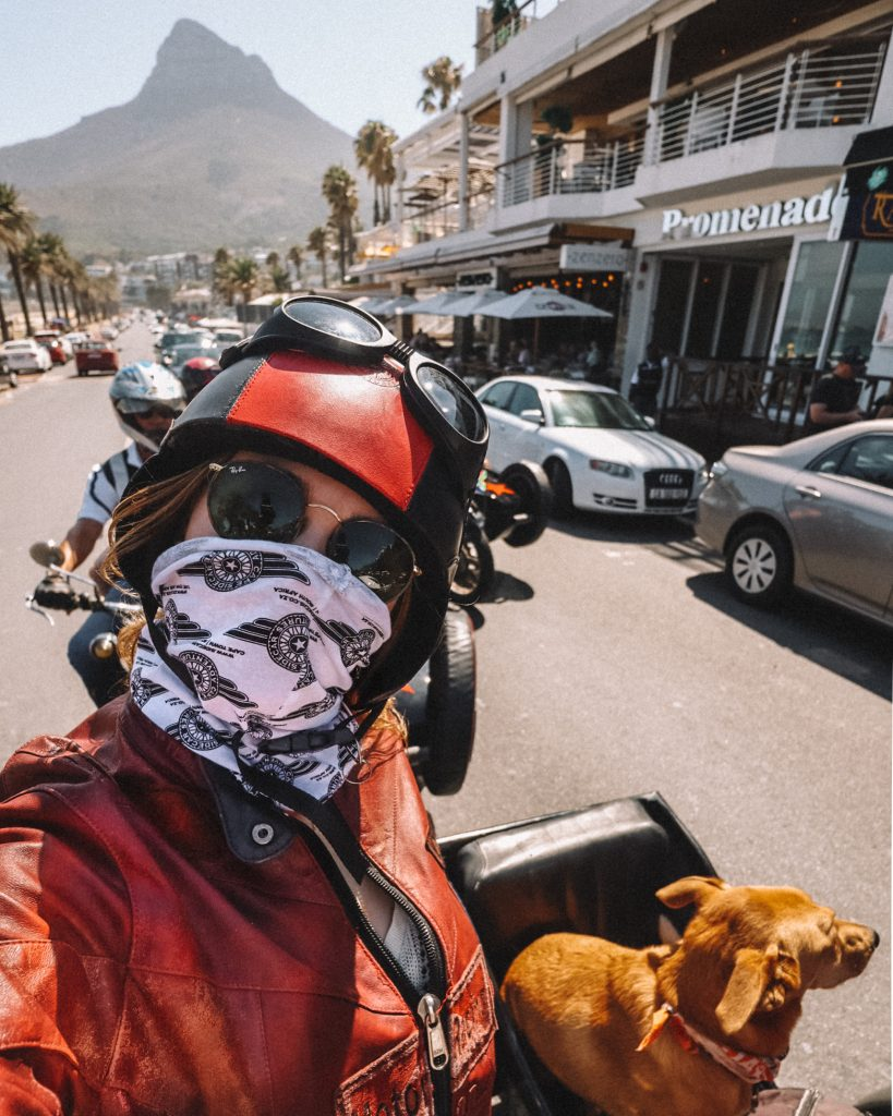 hoogtepunten Kaapstad