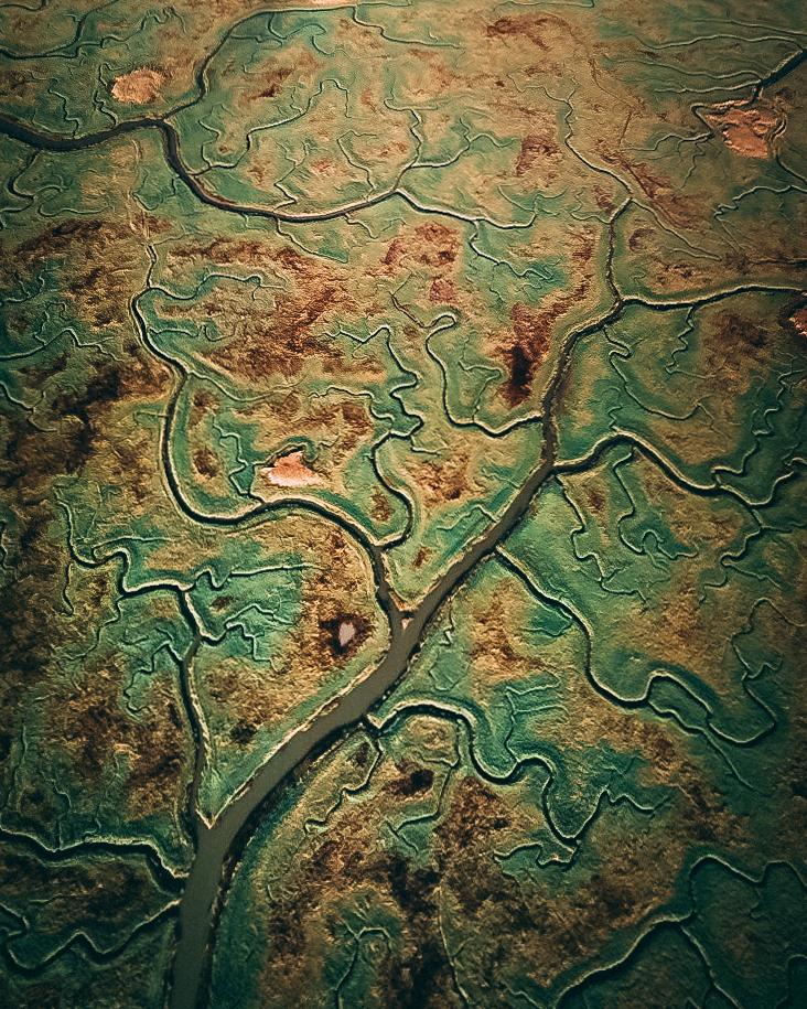 Het verdronken land van Saeftinghe, Waasland