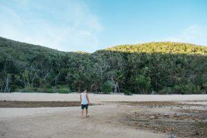 hamilton island coral cove beach