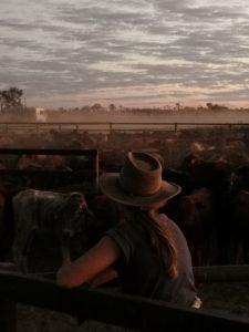 sunset outback yards