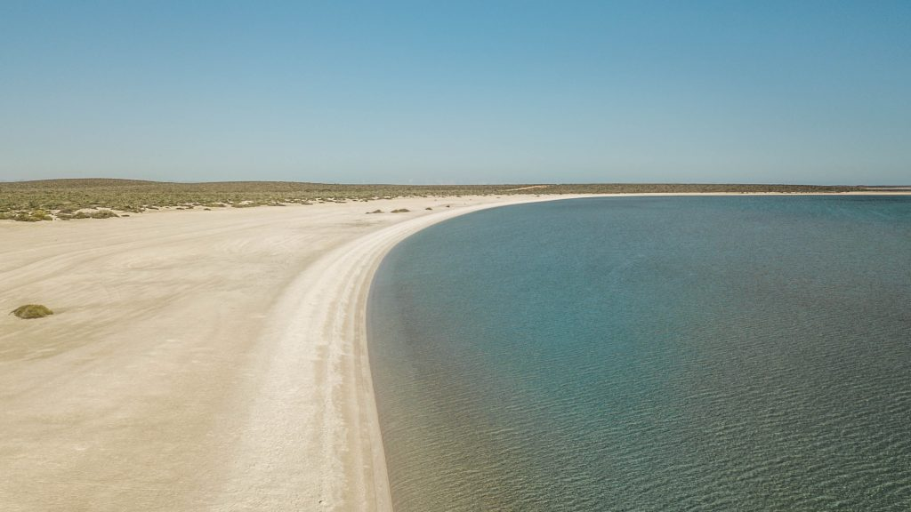 shell beach shark bay