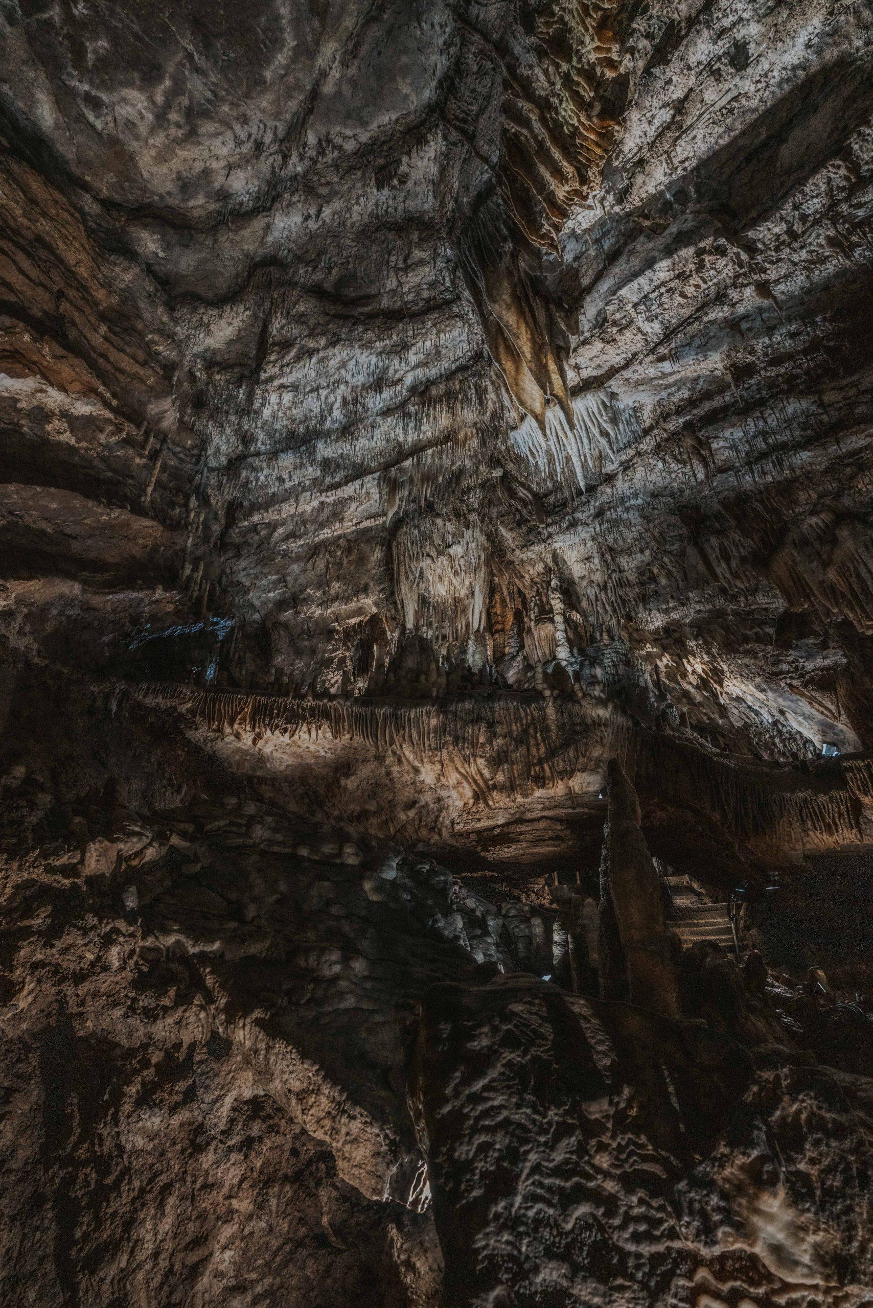wildpark grotten van han
